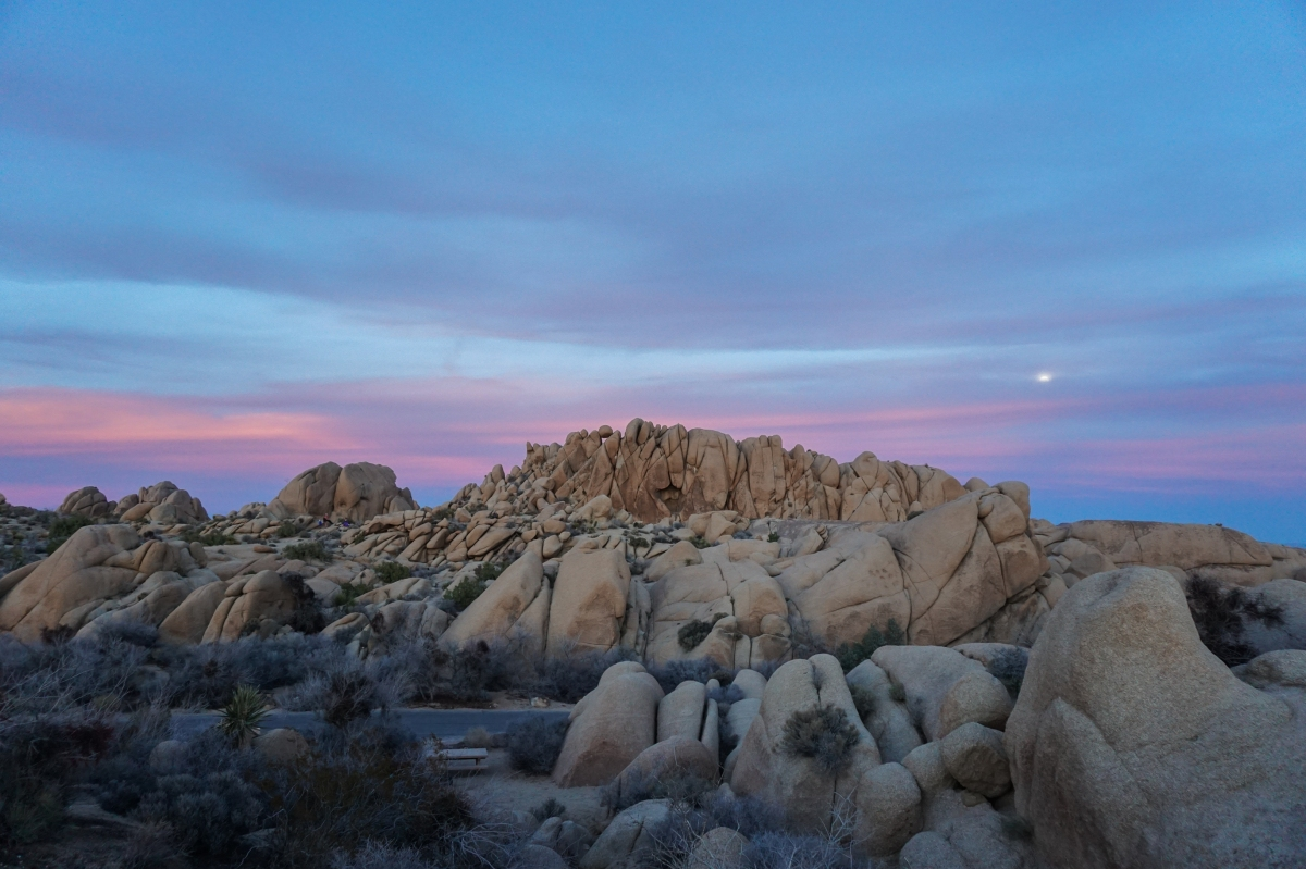 A Road Warrior's Guide to Joshua Tree, CA